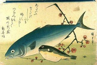Hiroshige_A_Shoal_of_Fishes_Fugu_Yellowtail.jpg