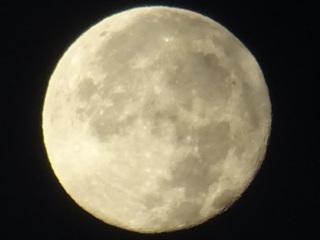 十六夜の月.JPG