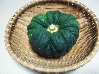 大和在来野菜「小菊南瓜」.jpg