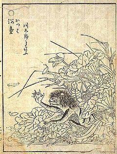 鳥山石燕・河童.jpg